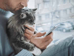 Micro-Moments in Marketing: Man Scrolling on Phone With Cat